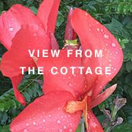 2-20-cottage.jpg