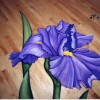Photo of Iris painted on floor.