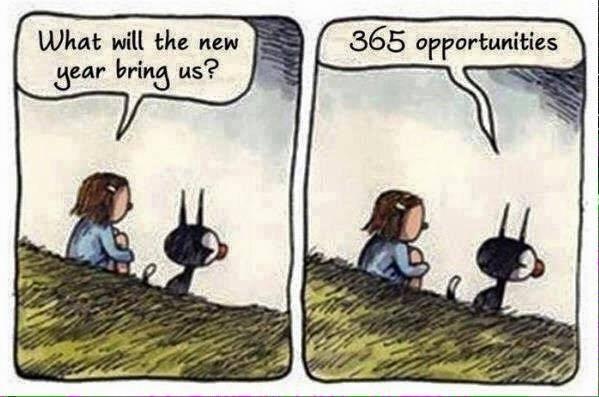 365Oportunities